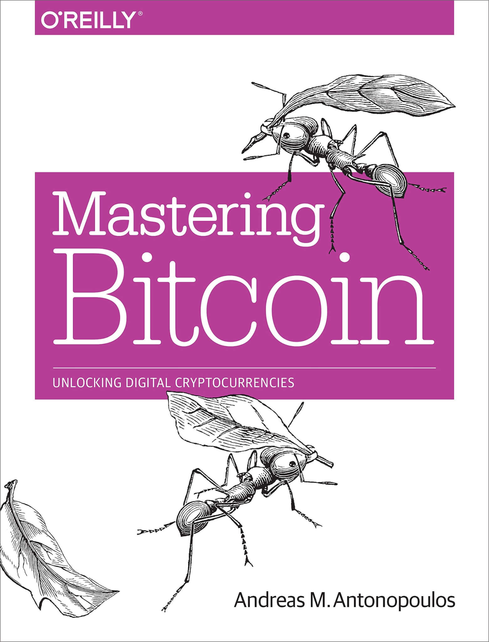 mastering bitcoin should be the first book a crypto newbie should read first.